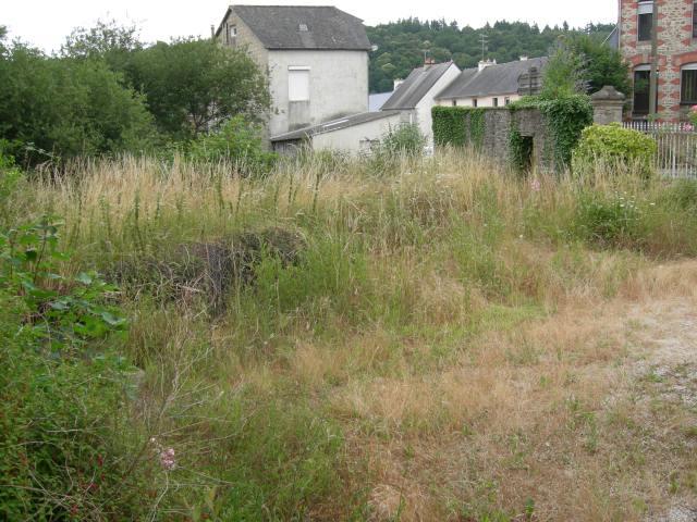 Front Garden Before